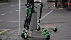 Lauren Mentijox: Lime e-scooters leave Hutt Valley for winter