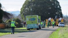 Two believed dead in crash involving two light planes near Masterton