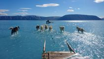 Photo highlights extent of sea ice melt in Greenland