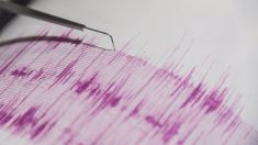 Oliver Peterson: Magnitude 7.3 earthquake hits Indonesia, felt in Darwin