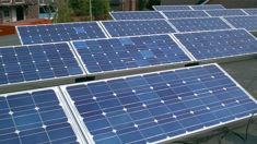 Matt Burgess: Government's plan to achieve 100 per cent renewable energy 'expensive, ineffective'