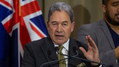 Peters made the comments on TVNZ's Q + A last night. (Photo / NZ Herald)