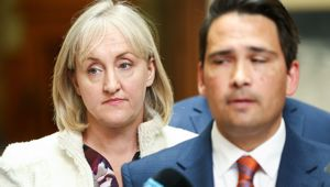 Amy Adams departure is a loss for National, writes Kate Hawkesby. (Photo / NZ Herald)