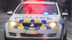 A man is in custody in relation to the incident but has not yet been charged (Image / NZH)