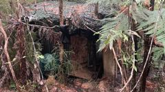 Police said the hut was well hidden and had clearly been used to manufacture methamphetamine. (Photo / Northern Advocate)