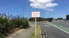 Pippa Coom: Auckland Council seeking national rule change to ban parking on berms