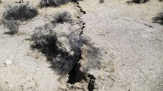 John Townsend: California earthquake shows benefit of an early warning system