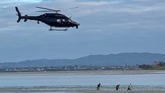 Teens on the run in the North Shore flushed out of mud by police Eagle helicopter