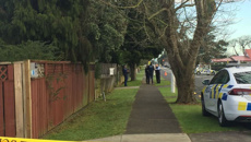 Worried, scared and frustrated: South Auckland dealing with string of shootings