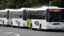 Talk of cheaper public transport fares for families welcomed