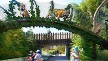 Auckland Zoo's $58m redevelopment: Going eye to eye with the tigers
