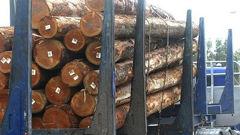 The log trade has taken a tumble, writes Andrew. (Photo / NZ Herald)