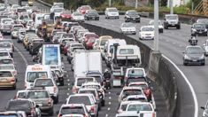 Heather du Plessis-Allan: Will refusal to build roads cost Labour the election?
