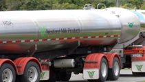 Westland Milk sale approved by High Court; Minister raises concerns about 'sovereign assests'