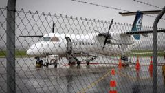 An Air NZ Link plane had to make an emergency landing at Tauranga Airport this afternoon. Photo / Andrew Warner