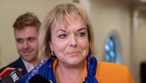 Judith Collins also had tough words for Megan Woods. (Photo / NZ Herald)