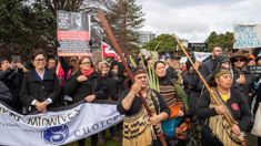 Alison Green: Protesters at Parliament demand end to Oranga Tamariki uplifts