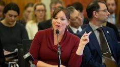 Heather du Plessis-Allan: Julie Anne Genter's behaviour over secret letter is disgraceful