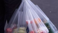 Eugenie Sage: Banning all single-use plastic bags will take too long