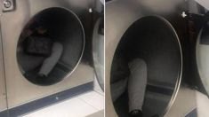 Police warning after man seen huffing petrol in Auckland laundromat dryer