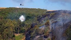 The Pigeon Valley fire burned around 2300ha of commercial plantation forest. (Photo / NZ Herald)