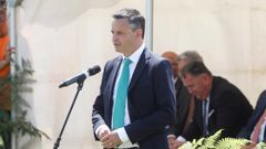 James Shaw has not said if he asked Liz MacPherson to resign. (Photo / NZME)