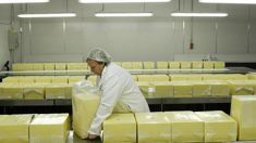 Mike Hannah: European Union trade deal could see New Zealand's cheese, scotch renamed