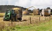 "About 14 per cent of New Zealand's land is currently considered ""highly productive"" for primary industries. (Photo / File)"