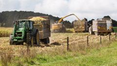 """About 14 per cent of New Zealand's land is currently considered """"highly productive"""" for primary industries. (Photo / File)"""