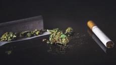 Jude Ball: Study reveals drop in teenage cannabis use