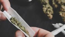 Cannabis poll: Support plummets for legal pot
