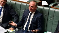 Murray Olds: Barnaby Joyce blasted for anti-abortion robocalls