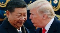 Xi's choice: Destroy Donald Trump, or weaken America