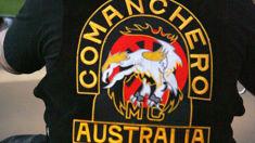 Adam: Former Australia federal police officer believes Comancheros will spark gang war in New Zealand
