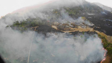 Amazon rainforest is burning at a record rate - smoke visibly from space