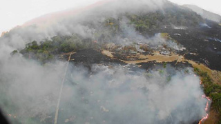 Amazon rainforest is burning at a record rate - smoke visible from space