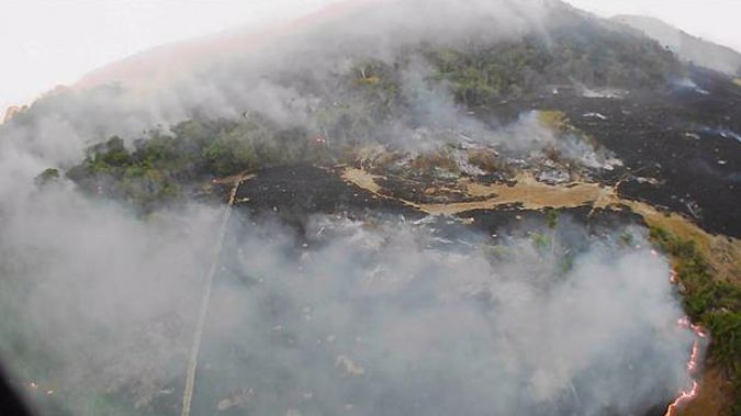 The states that have been most affected this year's fires are Mato Grosso, Para and Amazonas - all in the Amazon region - accounting for 41.7 per cent of all fires. (Photo / AP)