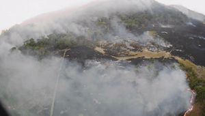 London-based Amnesty International has blamed the Brazilian government for the fires.