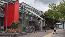 Measles outbreak: 300 students sent home from Auckland school