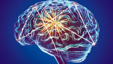 Sir Richard Faull: Study finds brain training can prevent mental decline