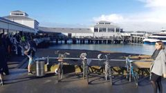 Hundreds of people queue at Devonport Ferry Terminal last month waiting on delayed Fullers vessels.