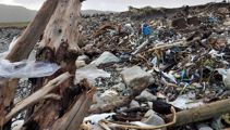 Waste management consultant praises Minister's landfill plan