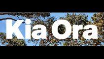 Outrage as Air New Zealand applies to trademark Kia Ora logo