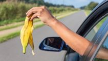 Is it OK to throw food scraps out the car window?