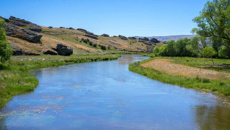 Tim Mackle: DairyNZ praises extension on freshwater submissions