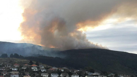 Giant vegetation fire sends plumes of smoke over Dunedin, properties evacuated