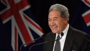 Acting Prime Minister Winston Peters. Photo / Mark Mitchell