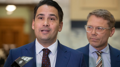 Simon Bridges: Luxon will need a mental transition from business to politics