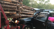 Driver rescued alive after car impaled by logs