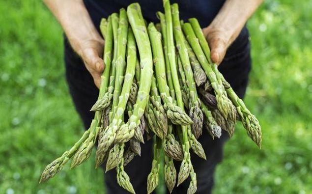 Lucy Corry: Asparagus with Mustard Crème Fraiche